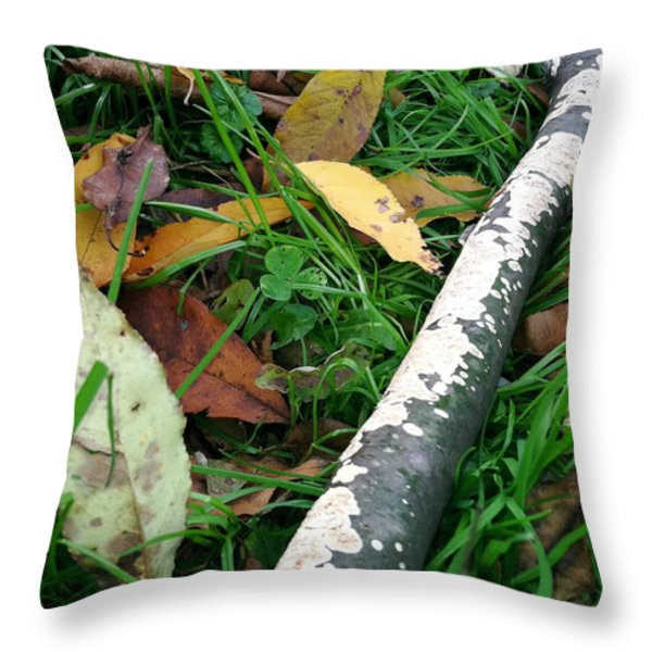 Lichen Recycling Throw Pillow by Trish Hale