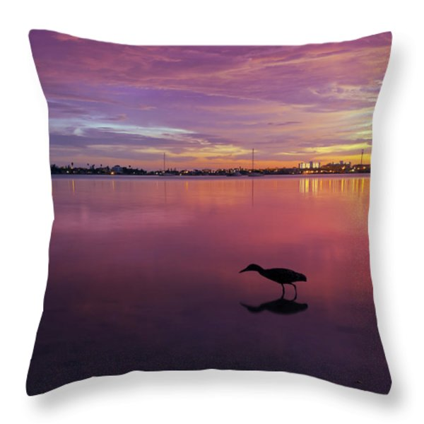 Life after Sunset Throw Pillow by Melanie Viola