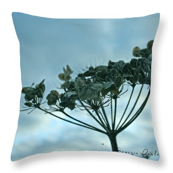 Life Cycle Throw Pillow by Nomad Art And  Design