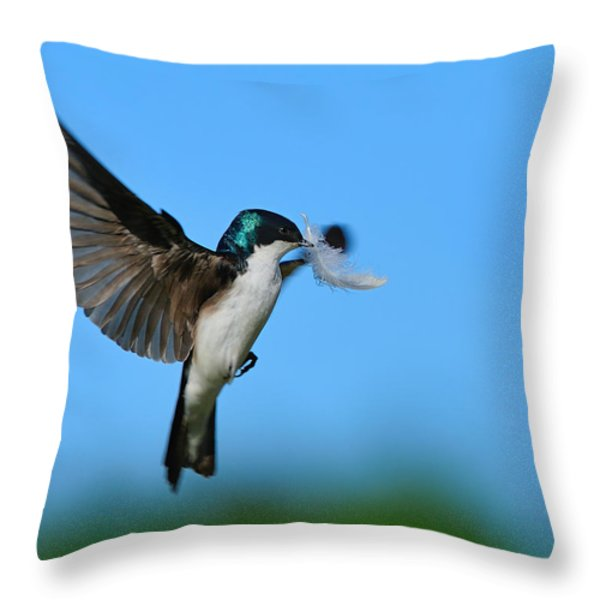 Light As A Feather Throw Pillow by Tony Beck