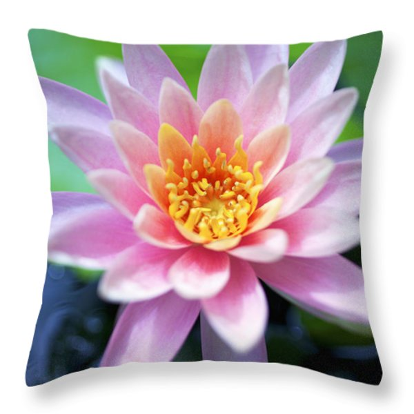 Light Pink Water Lily Throw Pillow by Kicka Witte