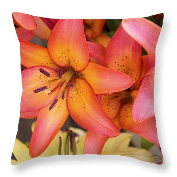 Lilies background Throw Pillow by Jane Rix