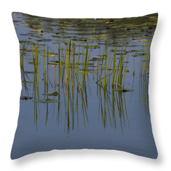 Lilly Pads Float On A River Throw Pillow by Stacy Gold