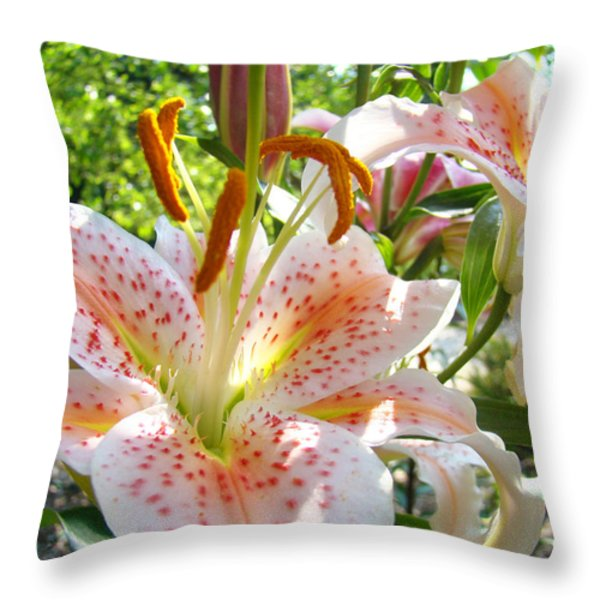 Lily Flowers Floral prints Photography Orange Lilies Throw Pillow by Baslee Troutman