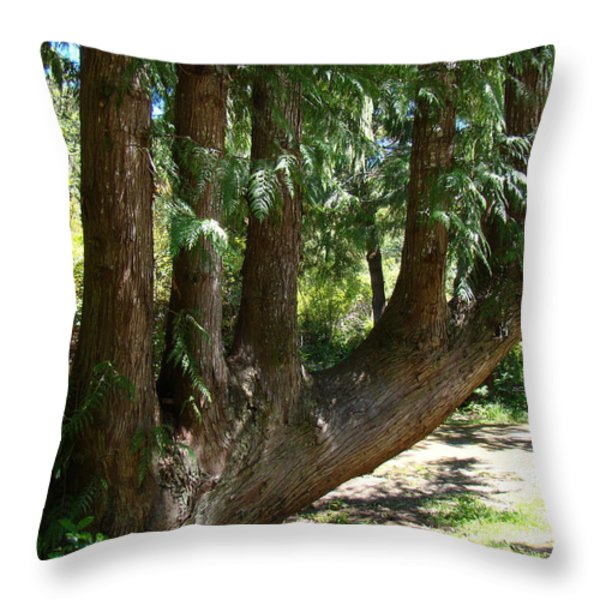 Limbs to Trees Throw Pillow by Nick Kloepping
