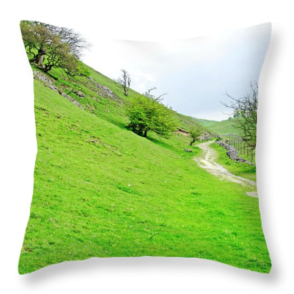 Lin Dale Throw Pillow by Rod Johnson