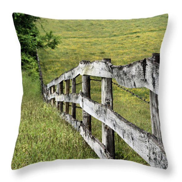 Lines Throw Pillow by JC Findley