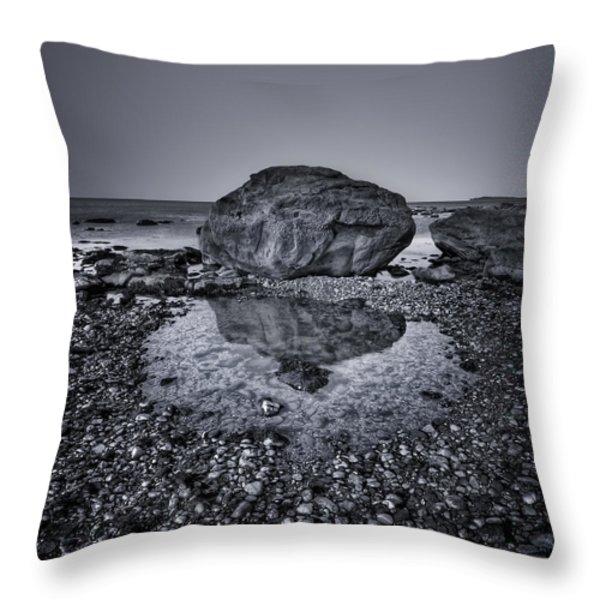 Liquid State Throw Pillow by Evelina Kremsdorf
