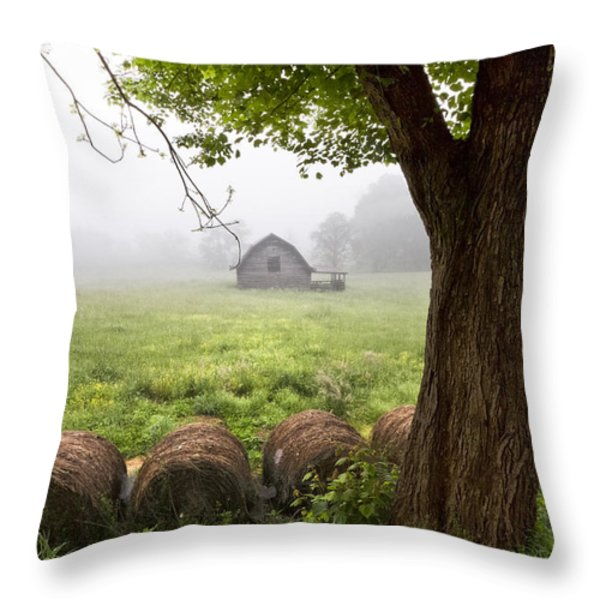 Little Barn Throw Pillow by Debra and Dave Vanderlaan