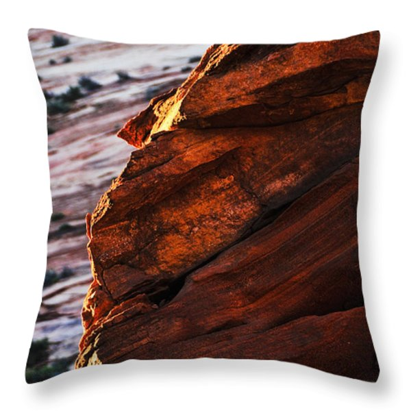 Little Brother Throw Pillow by Skip Hunt