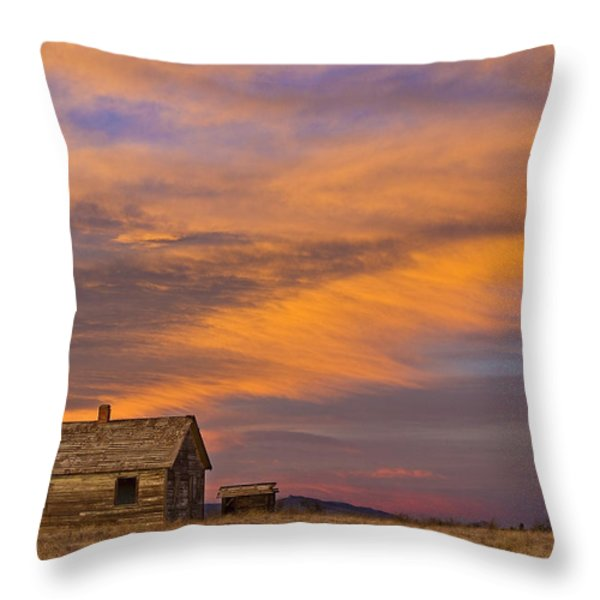 Little House On The Colorado Prairie 2 Throw Pillow by James BO  Insogna