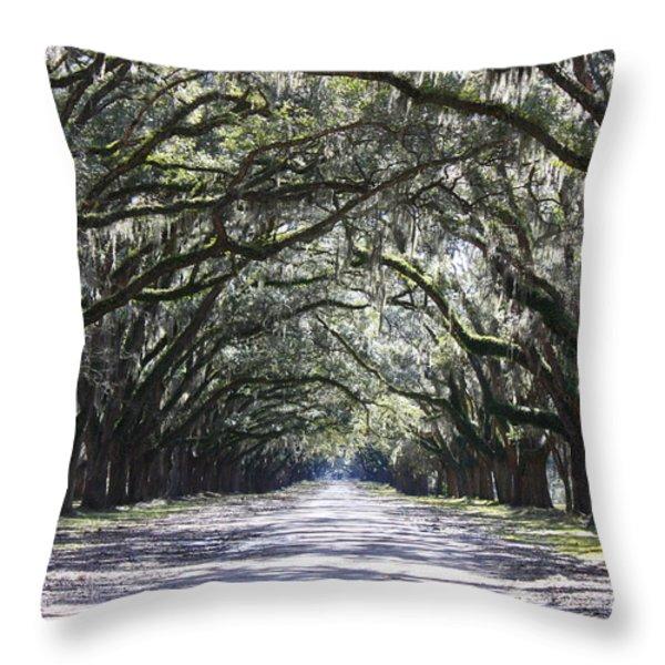 Live Oak Lane In Savannah Throw Pillow by Carol Groenen