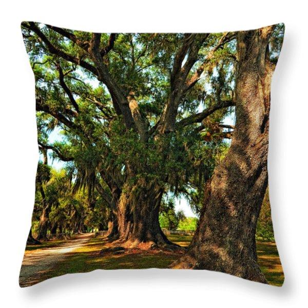 Live Oak Lane Throw Pillow by Steve Harrington