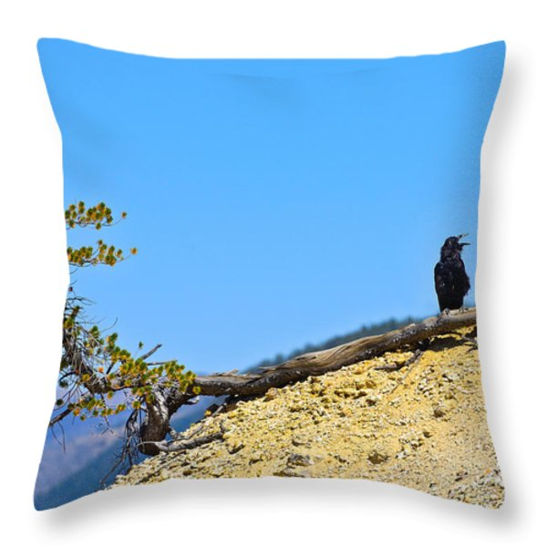 Living On The Edge Throw Pillow by Greg Norrell