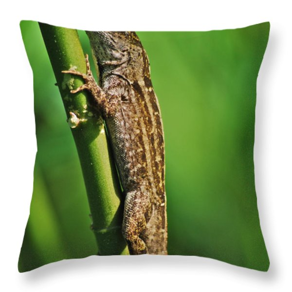 Lizard Throw Pillow by Michael Peychich