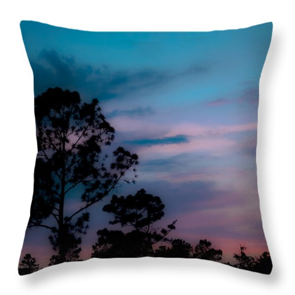 Loblelly Pine Silhouette Throw Pillow by DigiArt Diaries by Vicky B Fuller