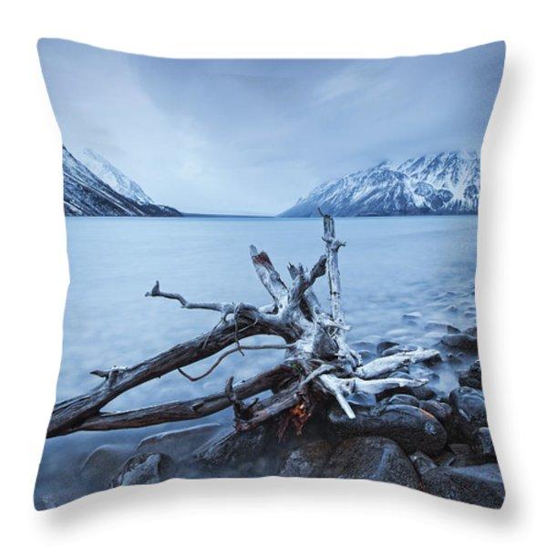 Log Along The Shores Of Kathleen Lake Throw Pillow by Robert Postma
