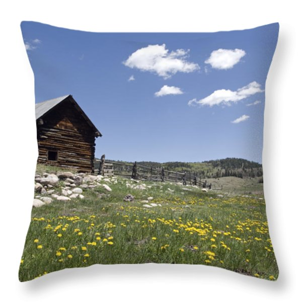 Log Cabin On The High Country Ranch Throw Pillow by Rich Reid