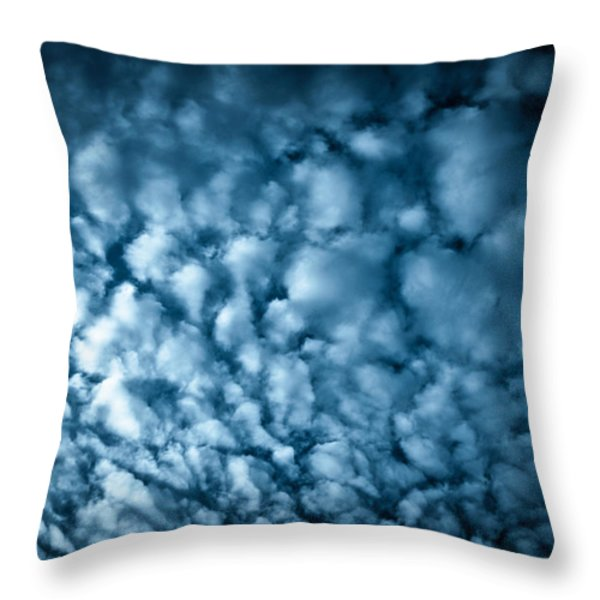 London Fluff Throw Pillow by Lenny Carter