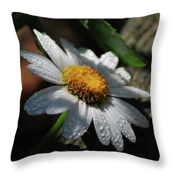 Lone Daisy Throw Pillow by Lori Tambakis