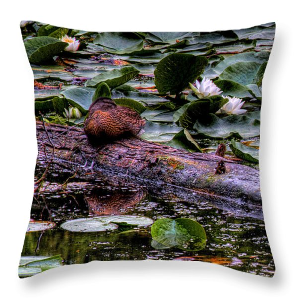 Lone Duck Throw Pillow by David Patterson
