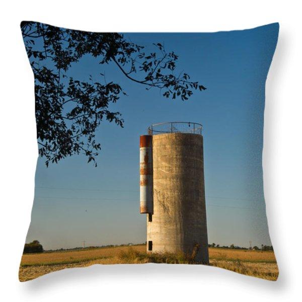 Lonely Silo 2 Throw Pillow by Douglas Barnett