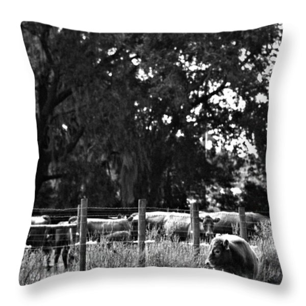 Lonesome Throw Pillow by John Lindroth
