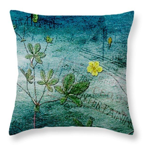 Long Ago And Far Away Throw Pillow by Bonnie Bruno