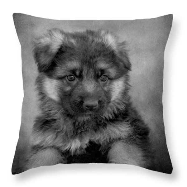 Long Coated Puppy II Throw Pillow by Sandy Keeton