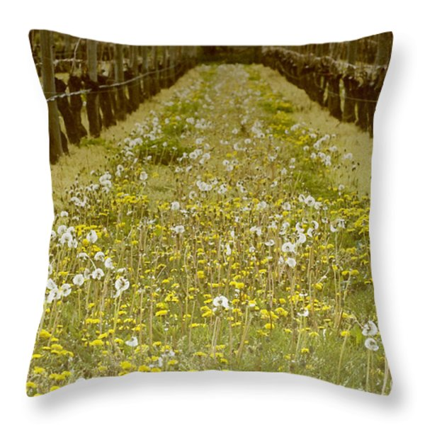 Long Island Vineyard Throw Pillow by Anahi DeCanio