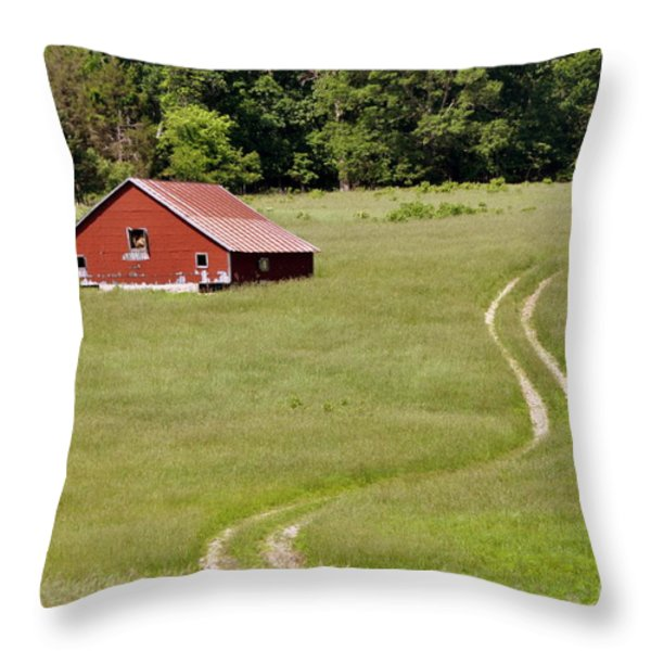 Lonly Barn Throw Pillow by Marty Koch