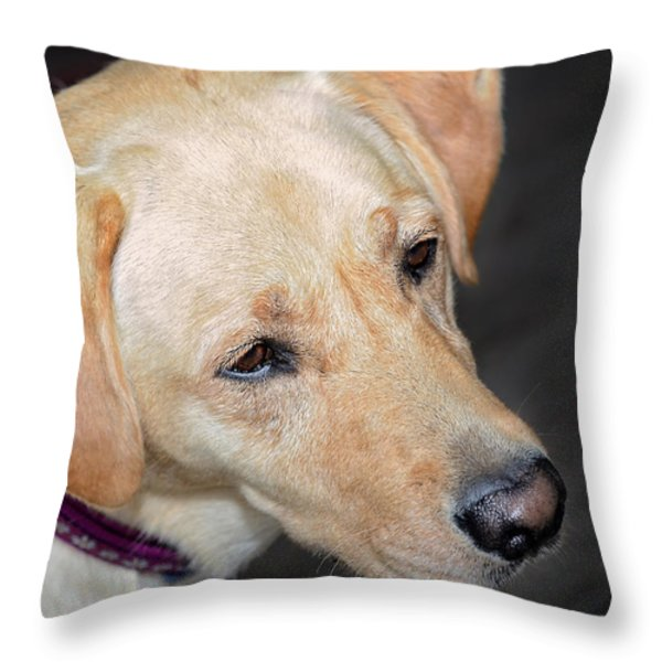 Looking For Trouble Throw Pillow by Susan Leggett