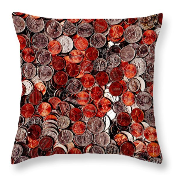 Loose Change . 9 to 12 Proportion Throw Pillow by Wingsdomain Art and Photography
