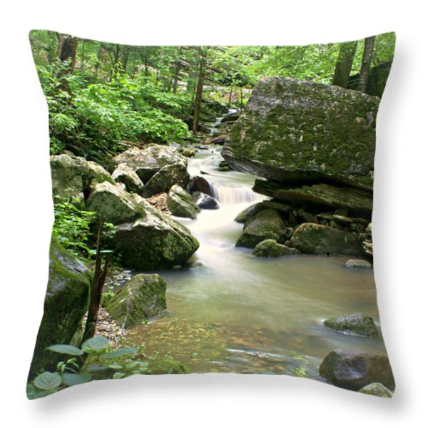 Lost Valley 2 Throw Pillow by Marty Koch