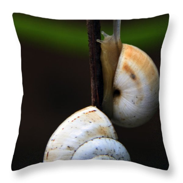 love affair Throw Pillow by Stylianos Kleanthous