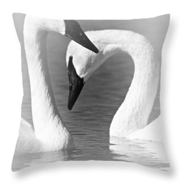 Love In Black And White Throw Pillow by Larry Ricker
