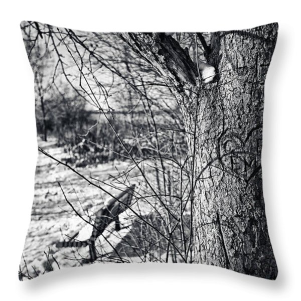 Love on a Tree Throw Pillow by CJ Schmit