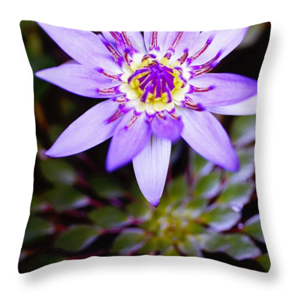 Lovely Lavendar Liliy Throw Pillow by Kicka Witte