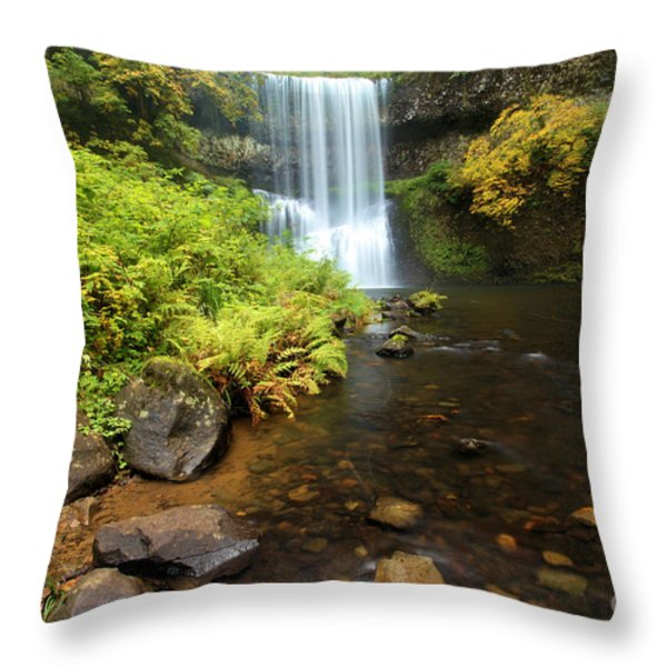 Lower South Falls Throw Pillow by Adam Jewell