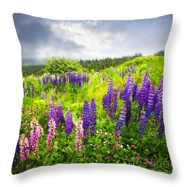 Lupin Flowers In Newfoundland Throw Pillow by Elena Elisseeva