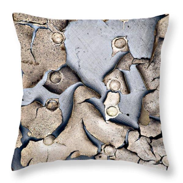 M O L T I N G Throw Pillow by Charles Dobbs
