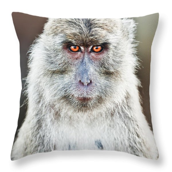 Macaque Portrait Throw Pillow by MotHaiBaPhoto Prints