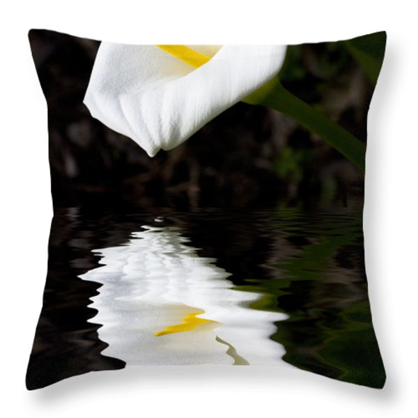 Madonna Lily Reflection Throw Pillow by Sheila Smart