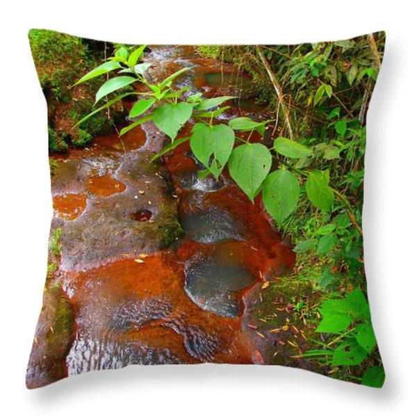 Magdalenita Throw Pillow by Skip Hunt