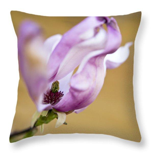 Magnolia Flower Throw Pillow by Frank Tschakert