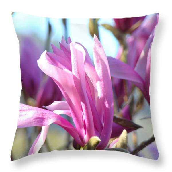 Magnolia Flowers Art Prints Pink Magnolia Tree Blossoms Throw Pillow by Baslee Troutman
