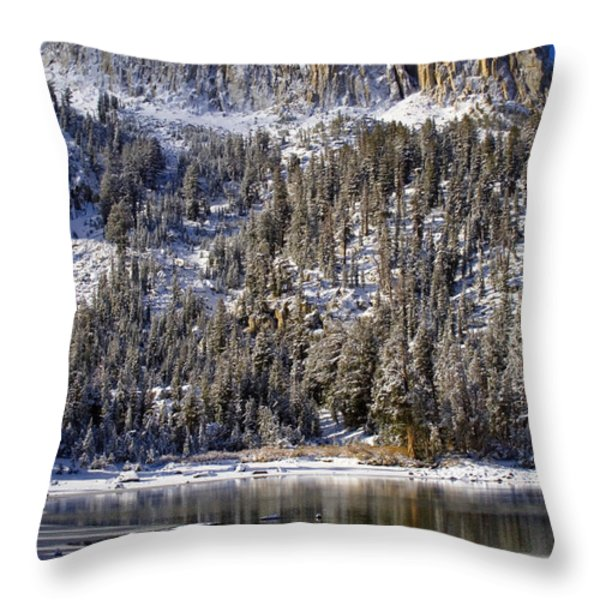 Majestically Cool Throw Pillow by Chris Brannen
