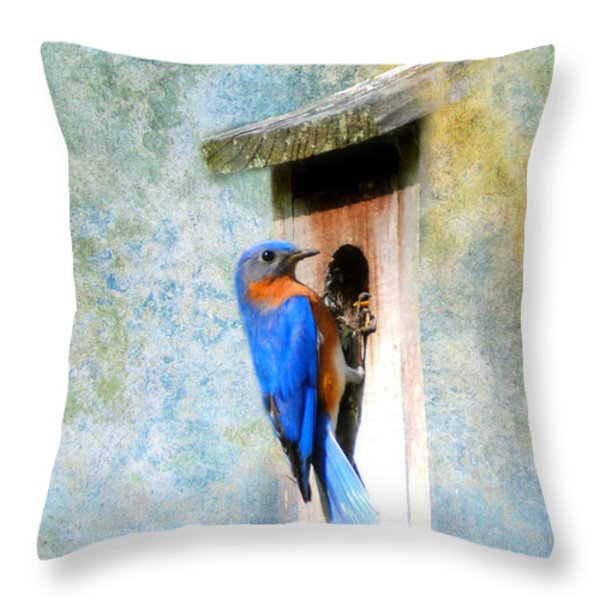 Male Eastern Bluebird At Nesting Box Throw Pillow by Jai Johnson