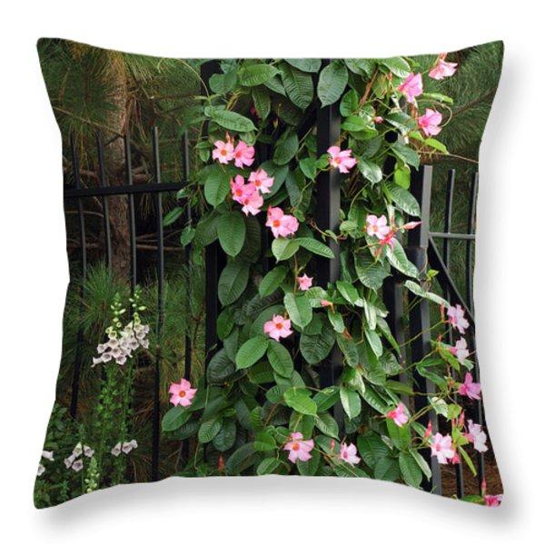 Mandevilla Vine With Pink Flowers Throw Pillow by Darlyne A. Murawski