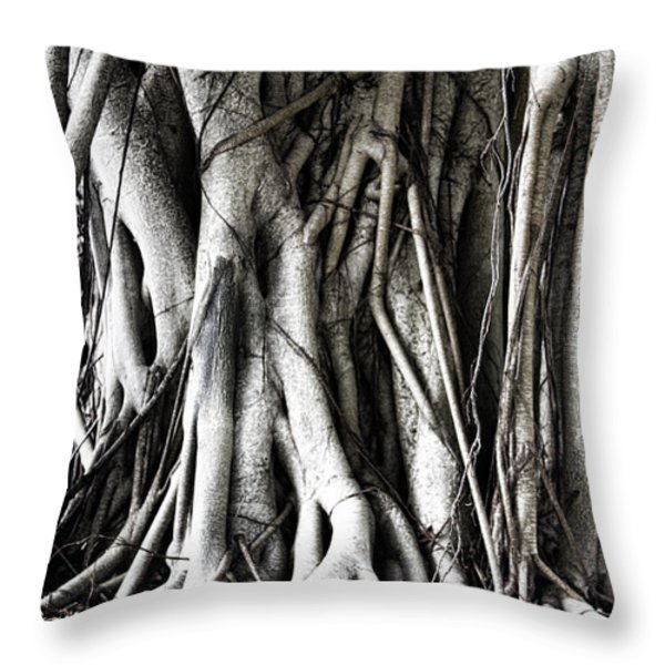 Mangrove Tentacles  Throw Pillow by Douglas Barnard